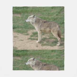 Timber Wolf Canine Fleece Blanket