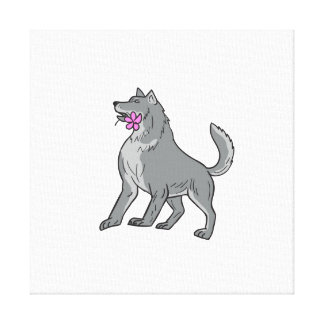Timber Wolf Holding Plumeria Flower Drawing Canvas Print