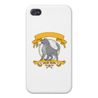 Timber Wolf Plumeria Flower Dreamcatcher Drawing iPhone 4 Cover