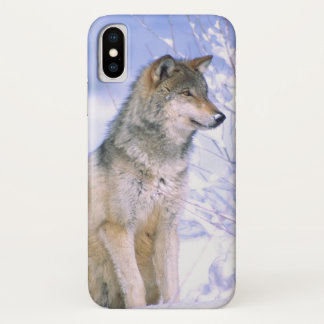 Timber Wolf sitting in the Snow, Canis lupus, iPhone X Case