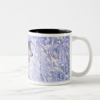 Timber Wolf sitting in the Snow, Canis lupus, Two-Tone Mug
