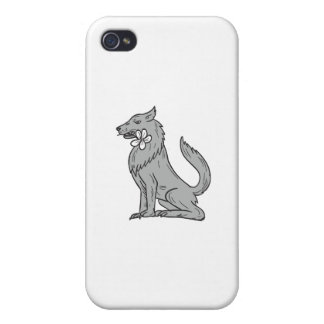 Timber Wolf Sitting Plumeria Flower Drawing iPhone 4 Cover
