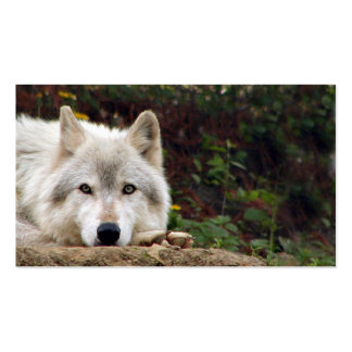 Timber wolf stare business card