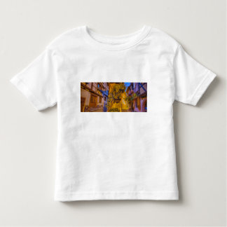 Timbered houses in the village of Eguisheim Toddler T-Shirt