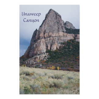 Timble Rock in Unaweep Canyon Poster