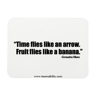 Time Flies Magnet