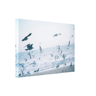 Time To Fly Romantic Birds Water Canvas Canvas Print