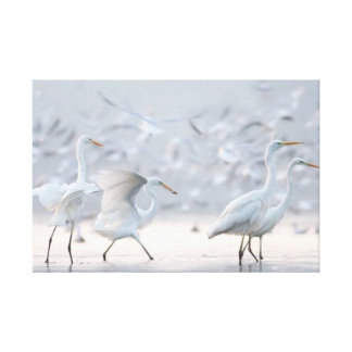 Time To Fly White Birds Landscape Wrapped Canvas