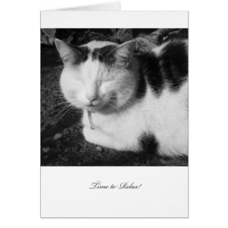 Time to Relax Cat - Blank Retirement Card