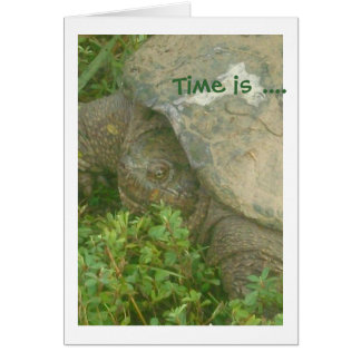 Time Turtle Card