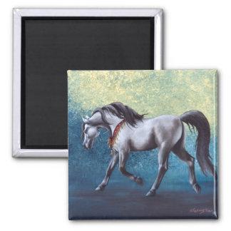 Timeless Arabian horse magnet