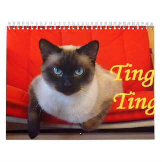 Ting Ting the Siamese Cat Calendar