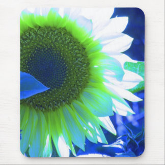 tinted pretty sunflower - blue mouse pad