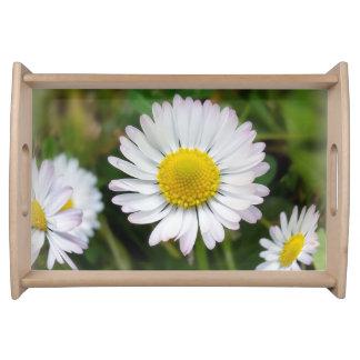 Tiny daisies serving tray