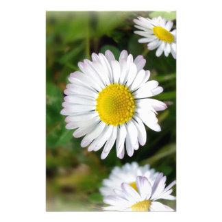 Tiny daisies stationery