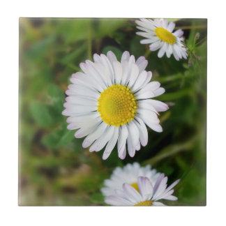 Tiny daisies tile
