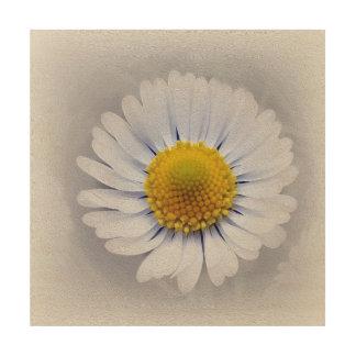 Tiny daisies wood print