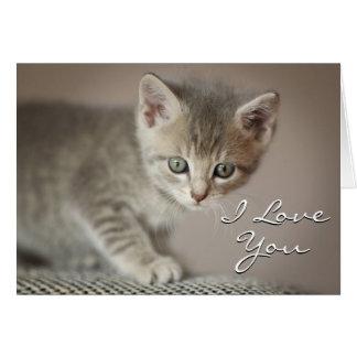 Tiny Kitten Card