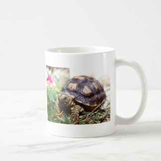 tiny mugs