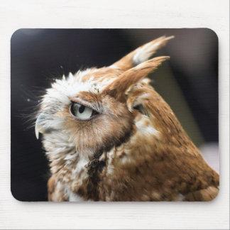 Tiny Owl Mouse Pad