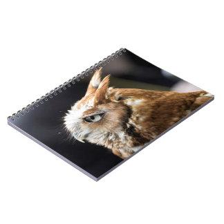 Tiny Owl Notebook