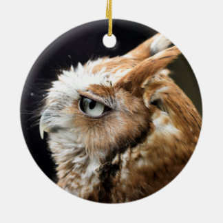 Tiny Owl Round Ceramic Decoration