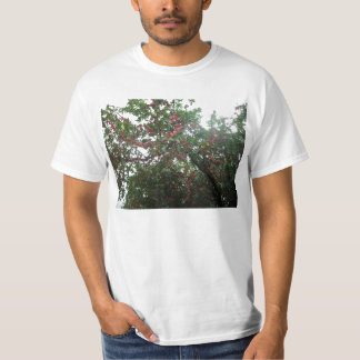 Tiny red roses t shirt