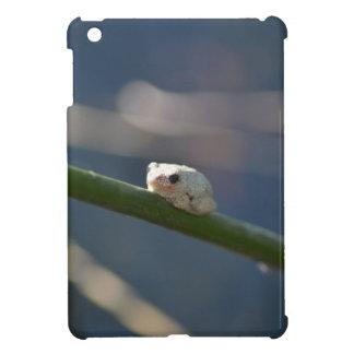 Tiny River Frog Case For The iPad Mini