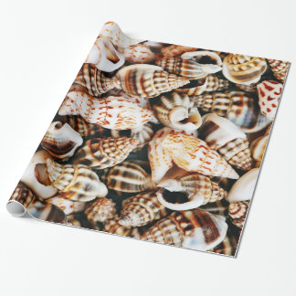 Tiny Seashells Wrapping Paper