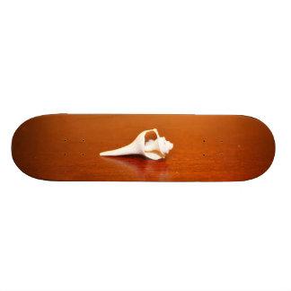 Tiny Shell Skate Board