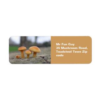 Tiny Toadstools Macro Custom Labels
