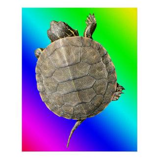 Tiny Turtle (Tortoise) on Rainbow Colors Gradient Poster