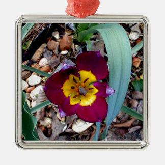 Tiny Two Tone Tulip Silver-Colored Square Decoration
