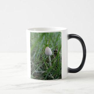 Tiny Wonder mug