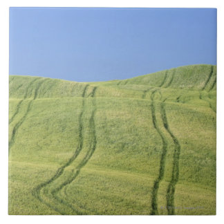 Tire Tracks in Wheat Field, Val d'Orcia, Siena Large Square Tile