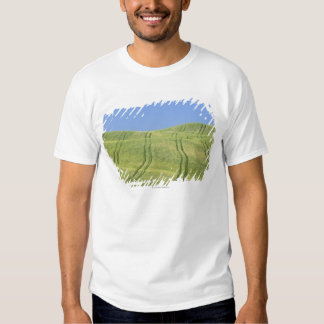 Tire Tracks in Wheat Field, Val d'Orcia, Siena Tshirt