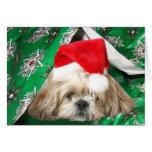 Tired Christmas Shih Tzu Greeting Card