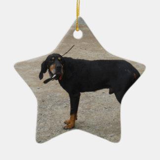 Tired Hunting Dog Ceramic Star Decoration