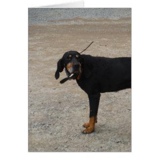 Tired Hunting Dog Greeting Card