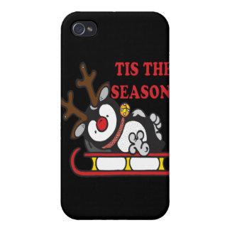 Tis The Season iPhone 4/4S Cases