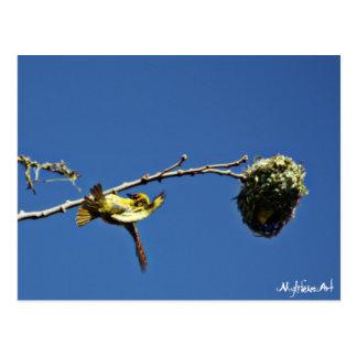 tisserain gendarme and his nest postcard