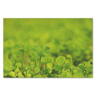 Tissue Paper with clover leaves in green grass