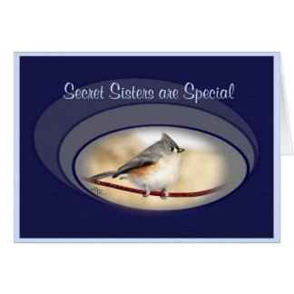 Titmouse card- secret sister or make any occasion card