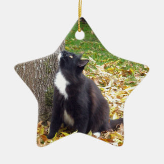 To Climb or Not - Kitty is Indecisive Ceramic Ornament