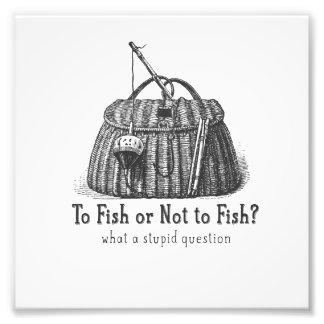 to fish or not stupid question vintage tackle box art photo