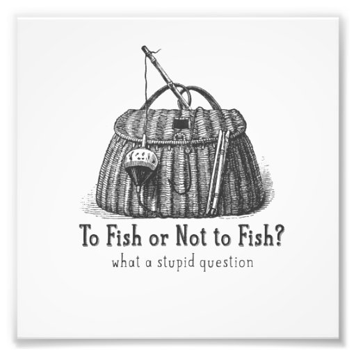 to fish or not stupid question vintage tackle box photographic print