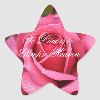 To Love is to Glimpse Heaven Star Sticker