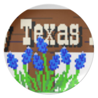 To my Texas Roots Plate