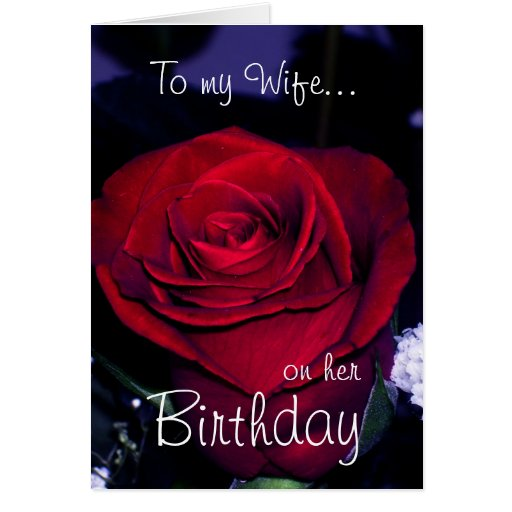 To My Wife On Her Birthday-Red Rose Romantic
