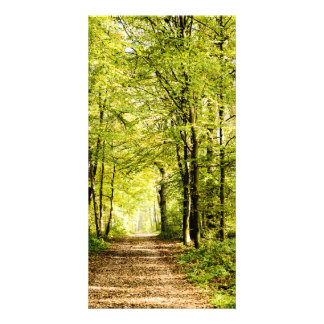 To pathway covered by leaves in magical a Forest Personalized Photo Card